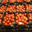 Anglia praca – sortowanie warzyw i owoców – Luton 2013