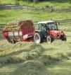 Niemcy praca na wakacje dla studentów w rolnictwie, przy sprzątaniu