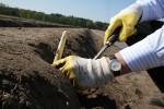 Francja praca sezonowa od zaraz przy zbiorach szparagów Valence
