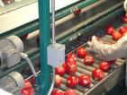 Praca we Francji przy sortowaniu, pakowaniu owoców Drome-Bren